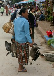 Luang Prabang, the gross parts
